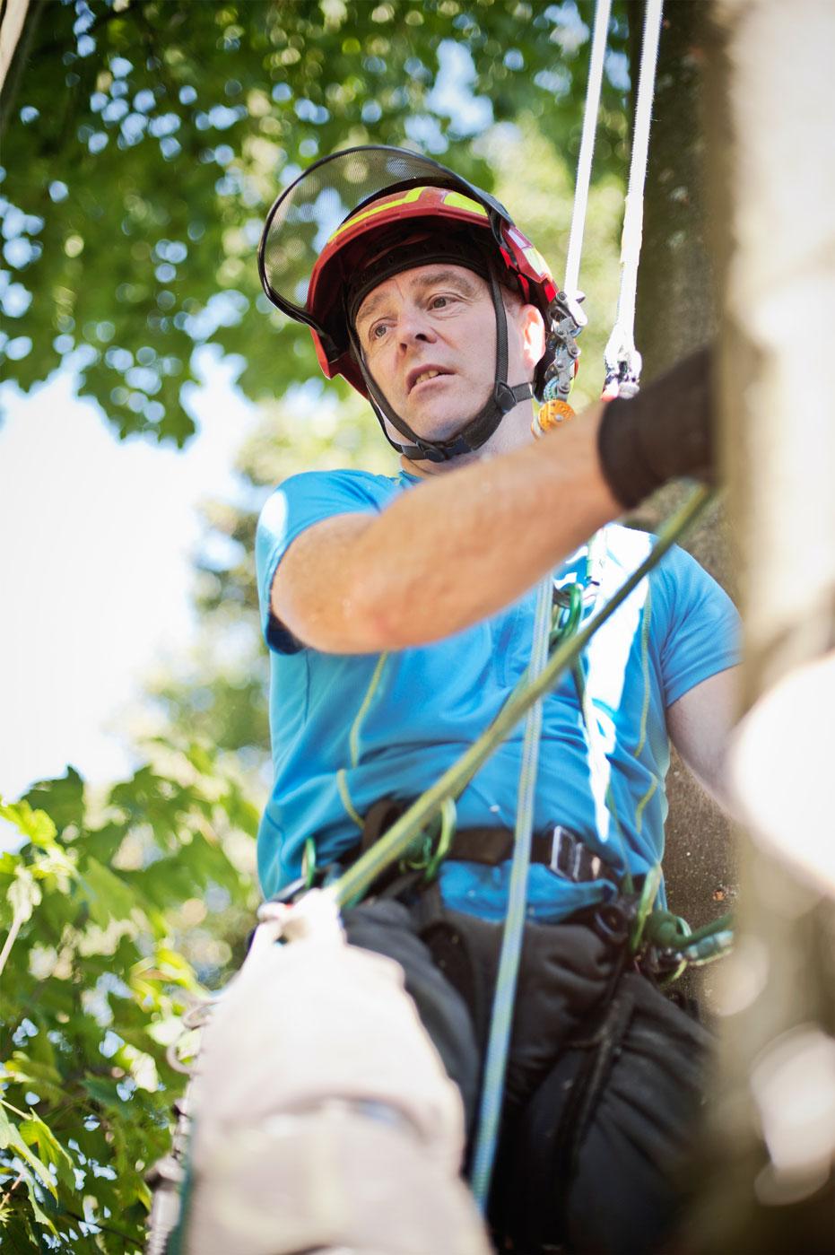 Baumpfleger Carsten Breker
