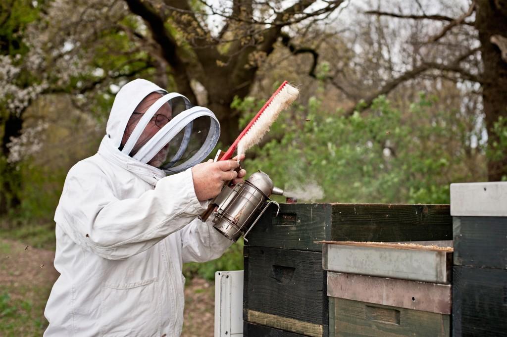 Rauch, Bienen, Schutzanzug