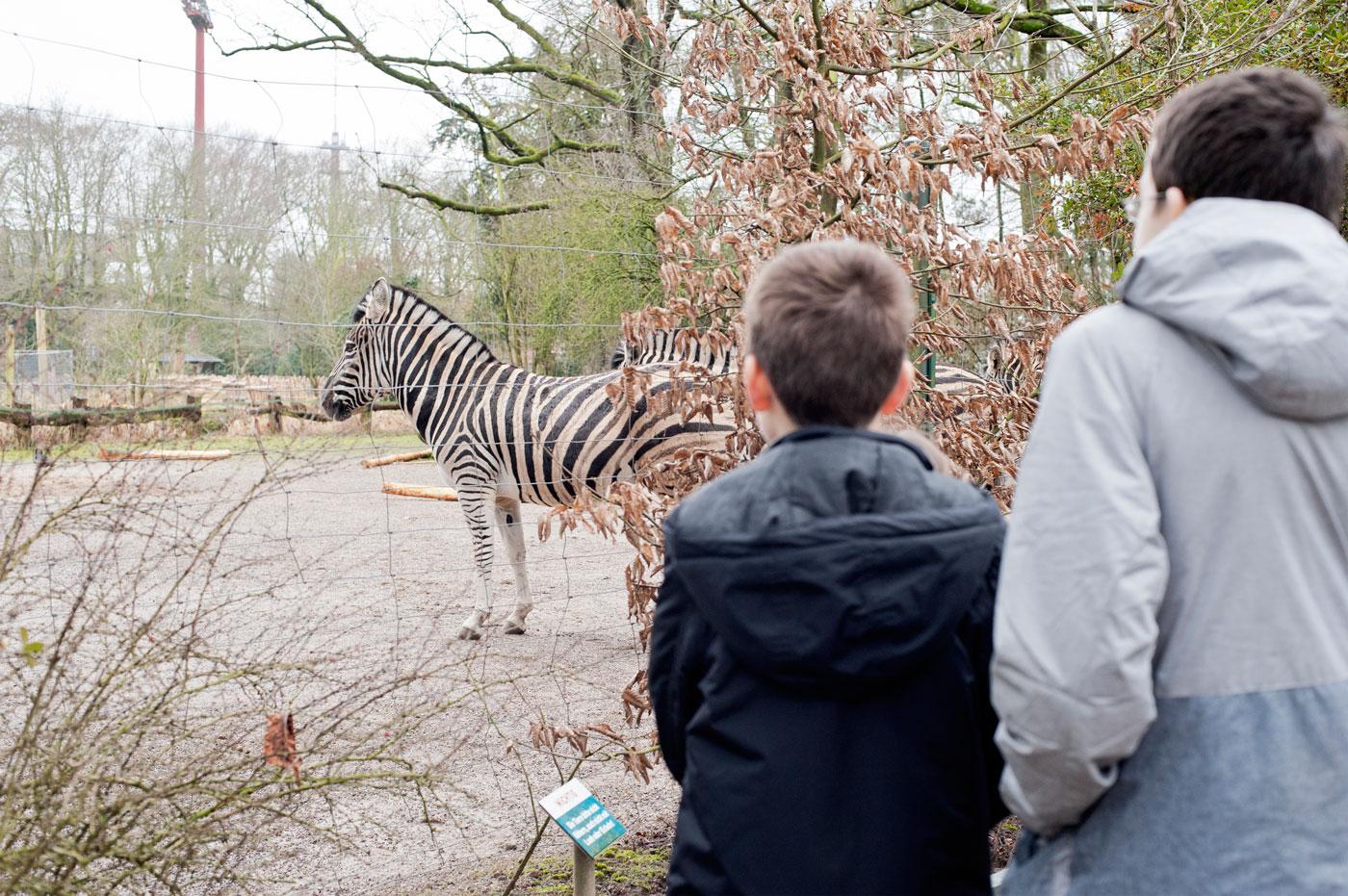 Zoo Krefeld - Tierischer Spaß für Groß und Klein